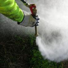 tratamientos herbicidas